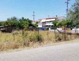 Πώληση, Αγροτεμάχιο 5900 τ.μ., Άγιος Ιωάννης Ρηγανάς, Αγρίνιο, € 120.000