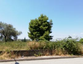 Πώληση, Οικόπεδο 975 τ.μ., Αγρίνιο, Αιτωλοακαρνανία, € 200.000